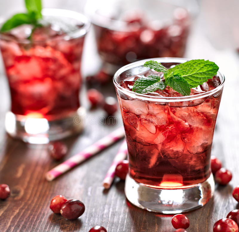 Free Cranberry Cocktail With Mint Garnish. Stock Images - 33442134