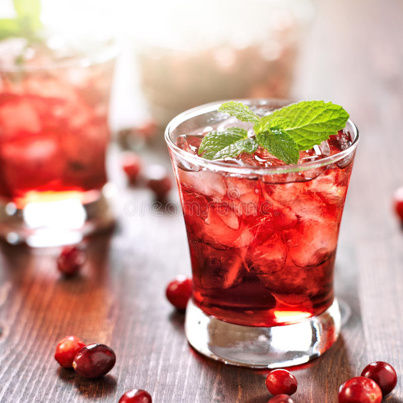 Free Cranberry Cocktail With Mint Garnish. Royalty Free Stock Photos - 33442238