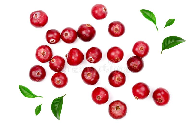 Cranberry decorated with green leaves isolated on white background closeup top view stock photos