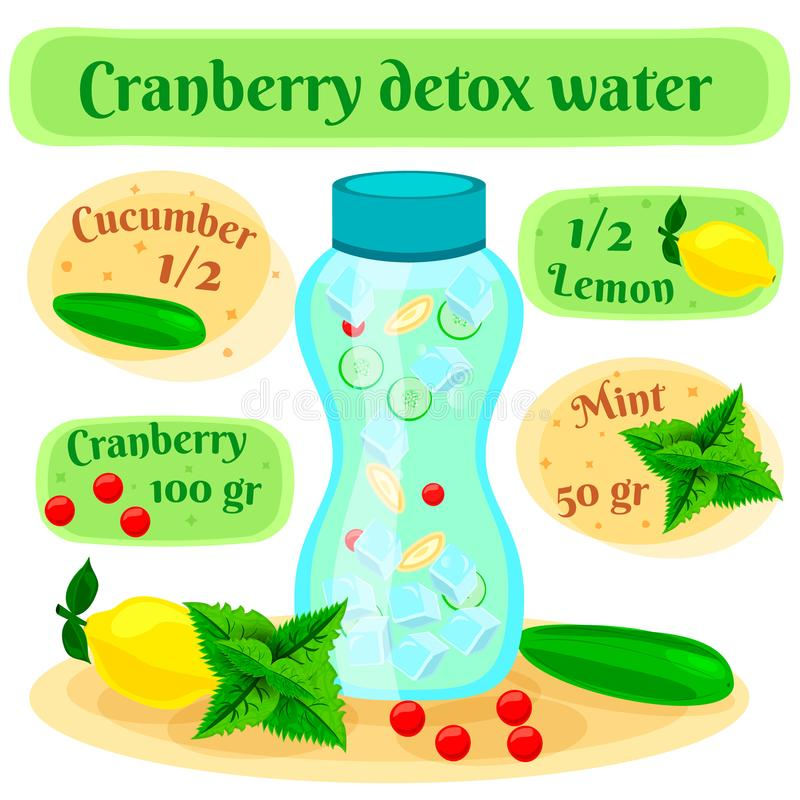 Cranberry Detox Water Flat Composition royalty free illustration