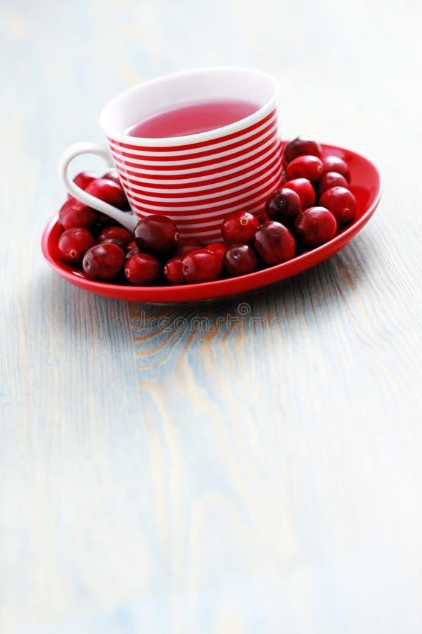 cranberry herbata obrazy royalty free