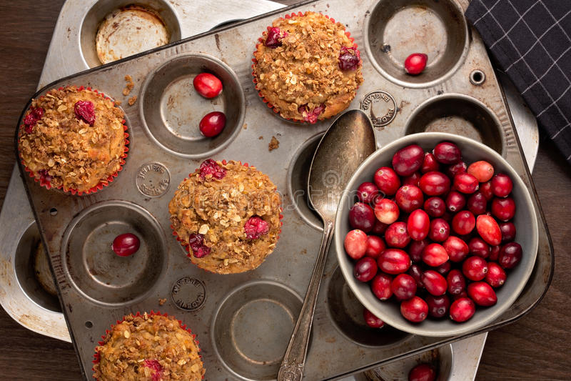 Cranberry muffins fotografia royalty free