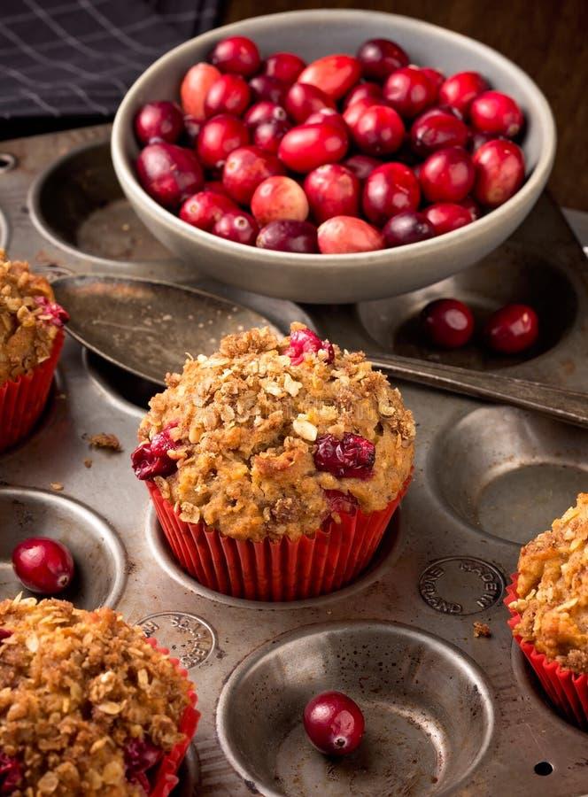 Cranberry muffins obraz royalty free