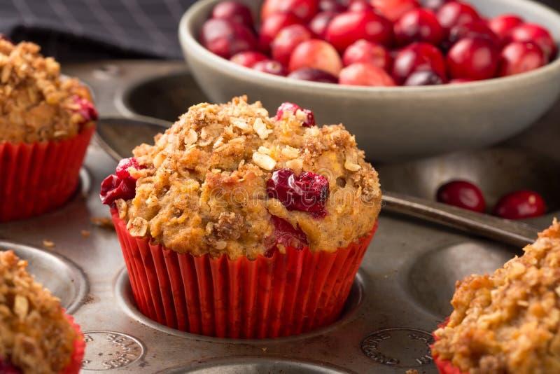 Cranberry muffins fotografia stock