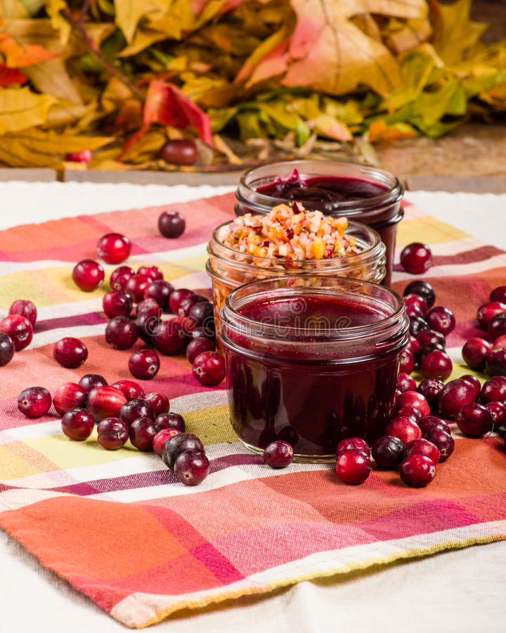 Cranberry sauce with cranberries and apple relish stock image