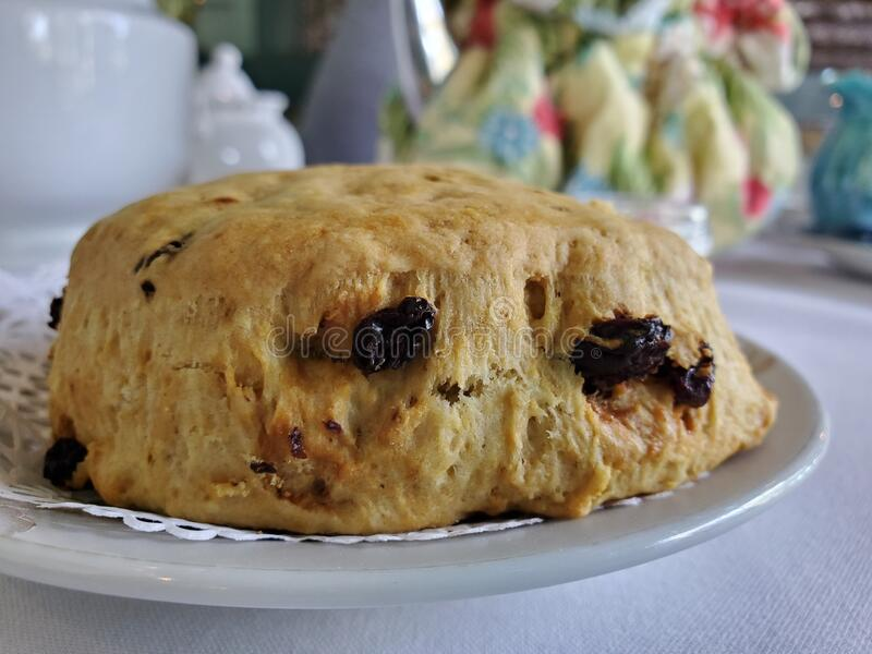 Cranberry scone closeup food at tea house meal baked goods stock image