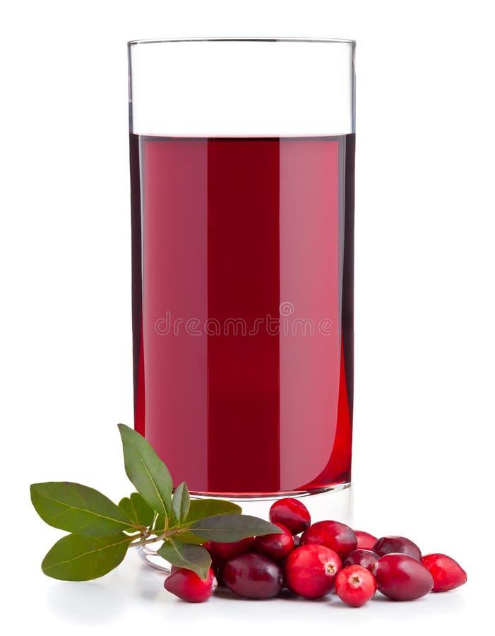 Cranberry sok zdjęcie royalty free
