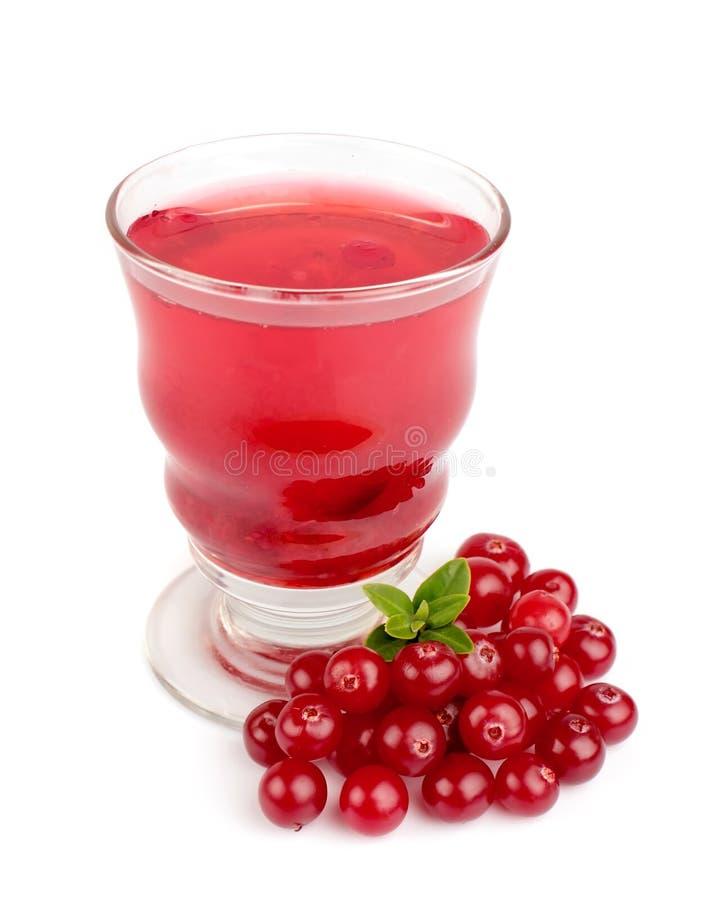 cranberry szkła sok zdjęcie stock
