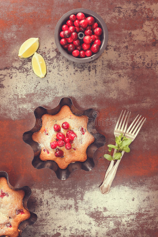 Cranberry Tart and fresh cranberries royalty free stock photos