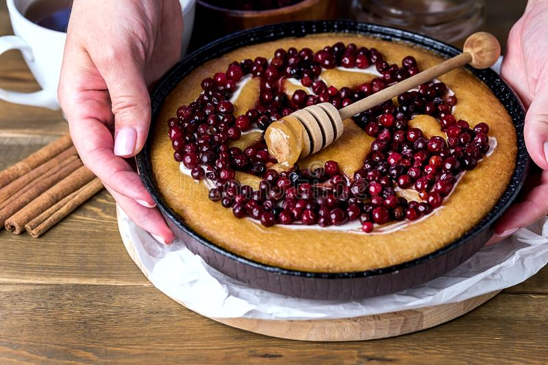 Cranberry Tasty Pie Delicious Cranberry Cake Fresh Cranberries for Christmas or Thanksgiving Day Wooden Background Homemade royalty free stock images