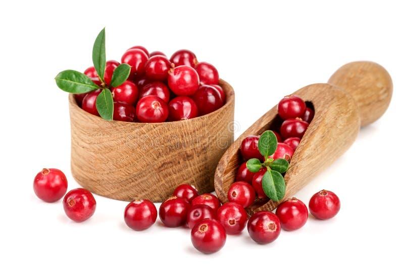 Cranberry z liściem w drewnianym pucharze i miarce odizolowywających na białym tła zbliżeniu zdjęcia royalty free