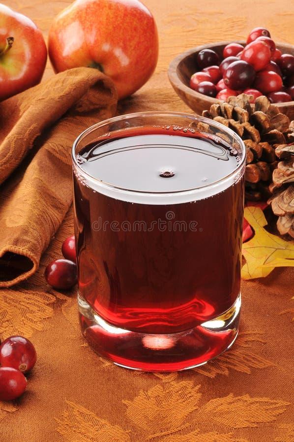 Cranberryfruktsaft med äpplet royaltyfri fotografi
