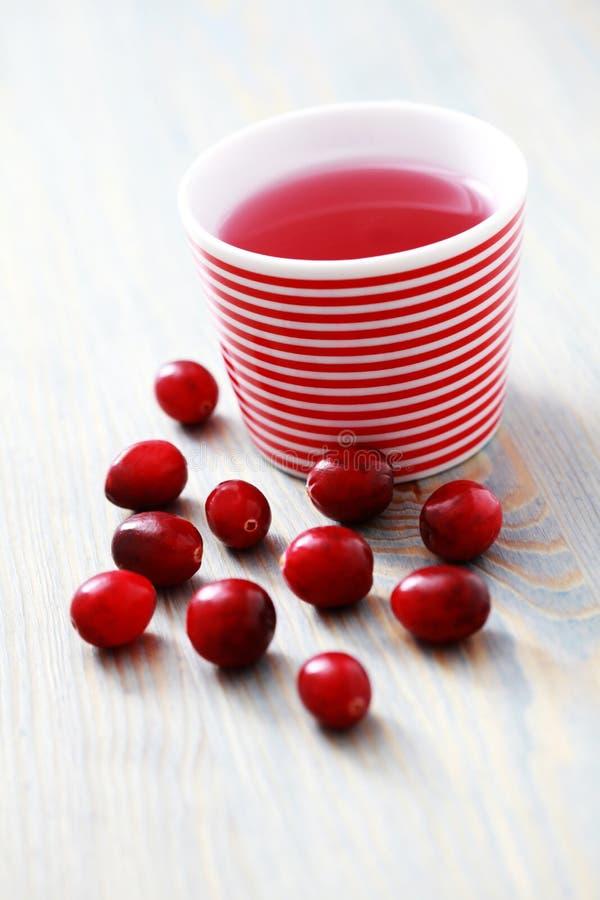 cranberrytea arkivfoton