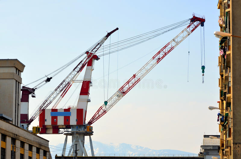 The crane stock photography