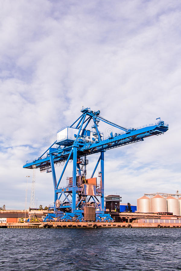 Cranee azul maciço imagens de stock royalty free