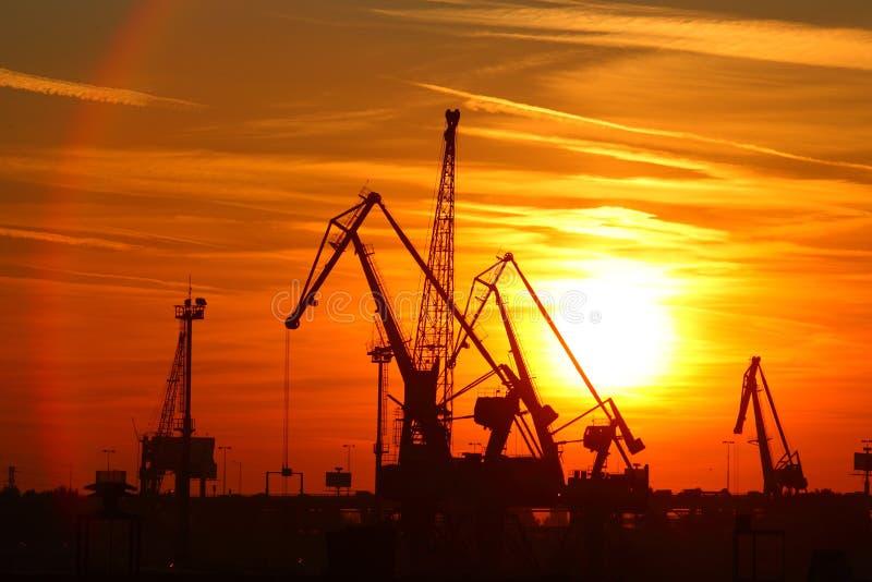 Download Cranes stock photo. Image of high, hoist, dusk, activity - 21876722