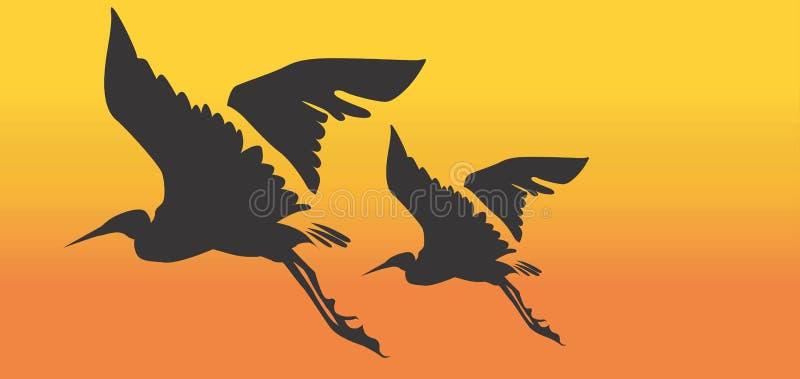 Cranes vector illustration