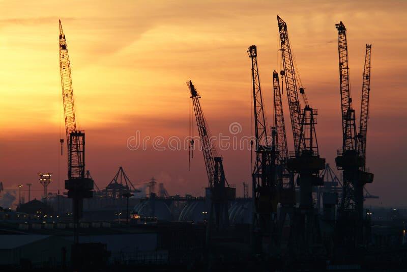 cranes στοκ εικόνες