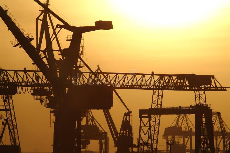 cranes στοκ φωτογραφία με δικαίωμα ελεύθερης χρήσης