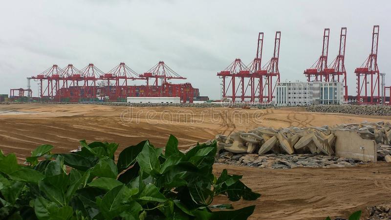 Cranes on the beach. In Colombo Sri Lanka ready to perform new quarter royalty free stock photos