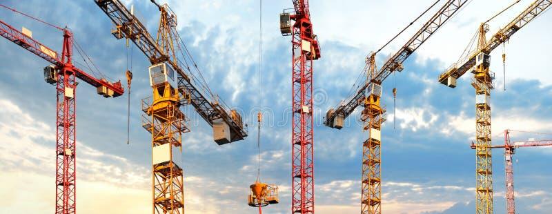 Cranes panorama fotos de archivo libres de regalías