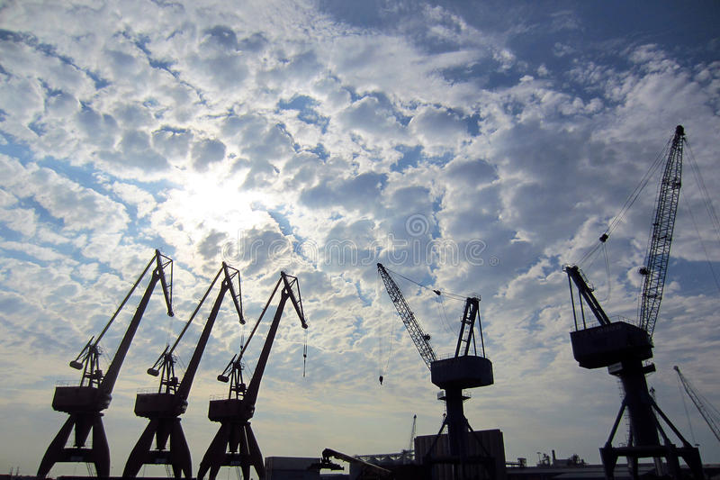 Download Cranes in a port stock photo. Image of waterfront, freight - 36361940