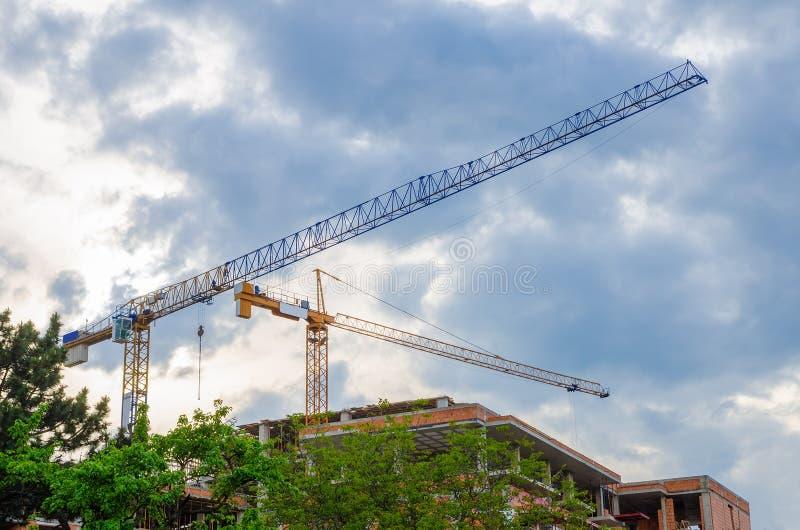 Cranes on a rainy day stock photos