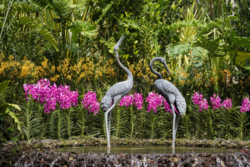 Cranes Sculpture at Singapore Botanical Gardens. Cranes Scultpure and beautiful orchids at Singapore Botanical Gardens stock photo