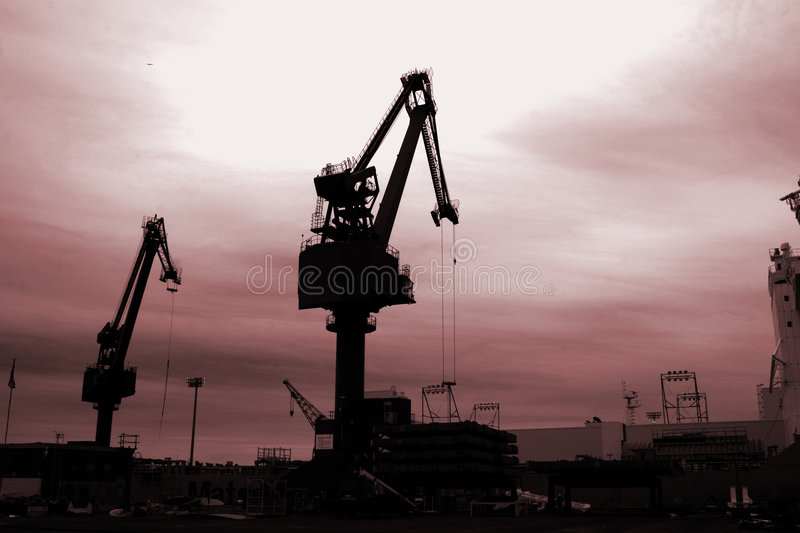 Cranes in the Sunset stock photography