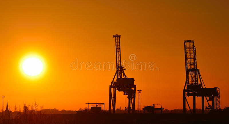 Cranes at Sunset Felixstowe stock images