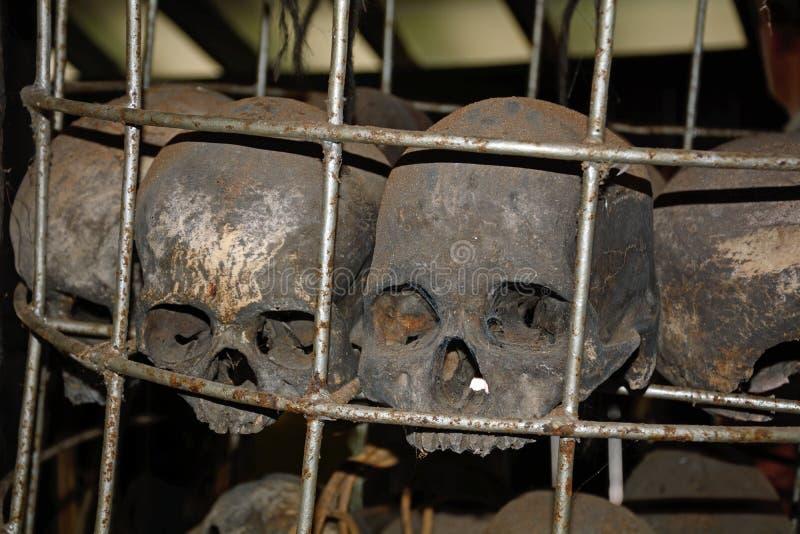 Crani in un villaggio del Dayak, Borneo, Malesia fotografia stock
