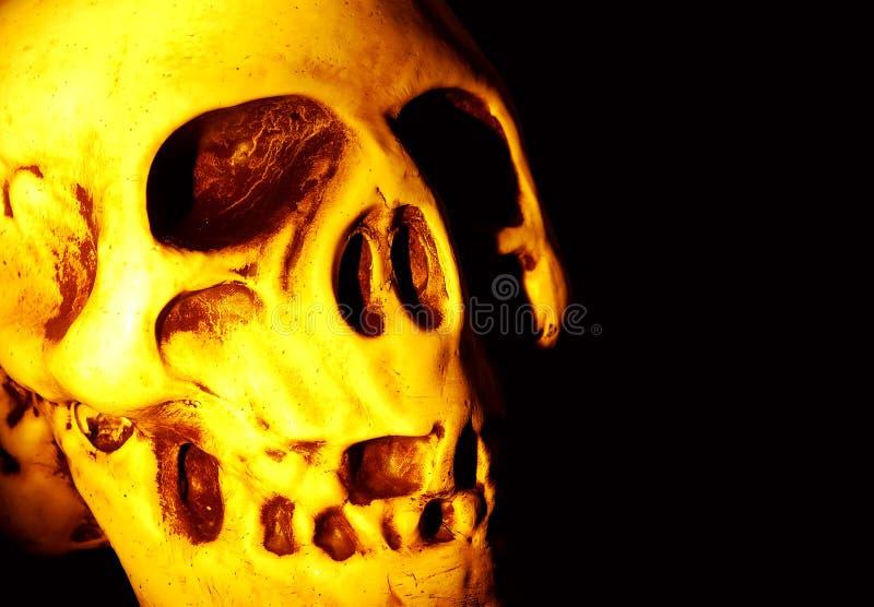 Download Cranio immagine stock. Immagine di guasto, halloween, deperimento - 209885