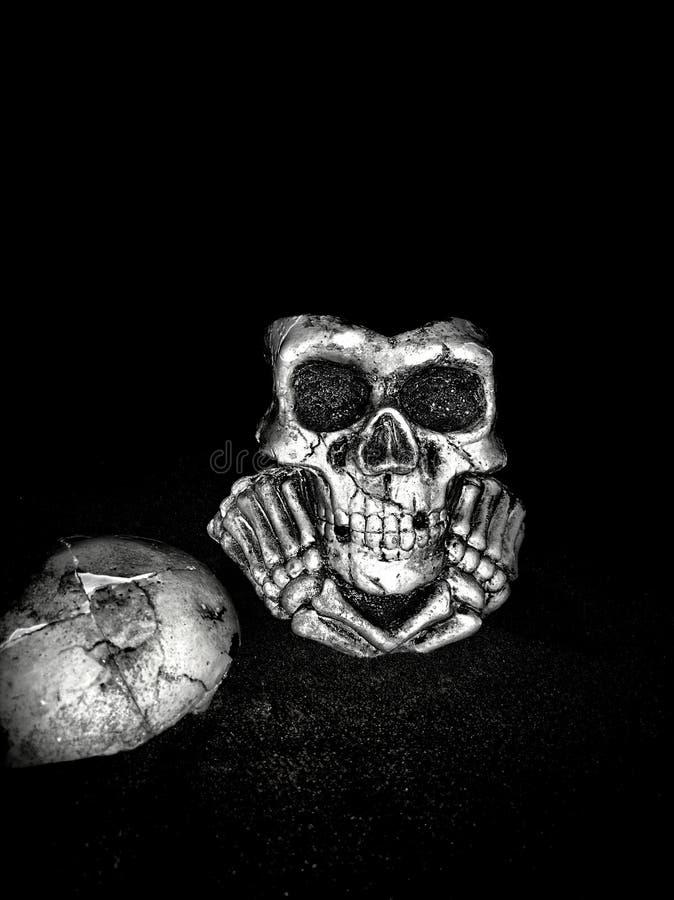cranio immagine stock libera da diritti