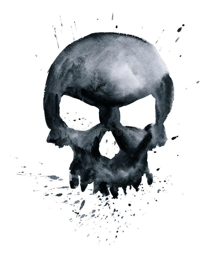 Cranio dell'acquerello royalty illustrazione gratis