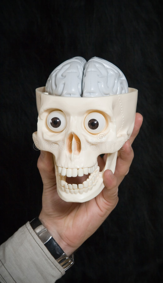 Cranio e cervello della holding della mano fotografia stock libera da diritti