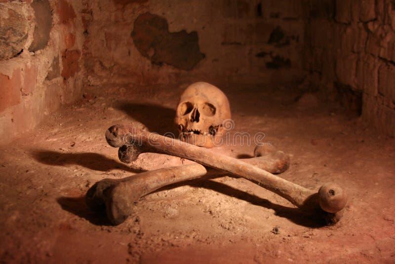 Cranio e Crossbones immagini stock libere da diritti
