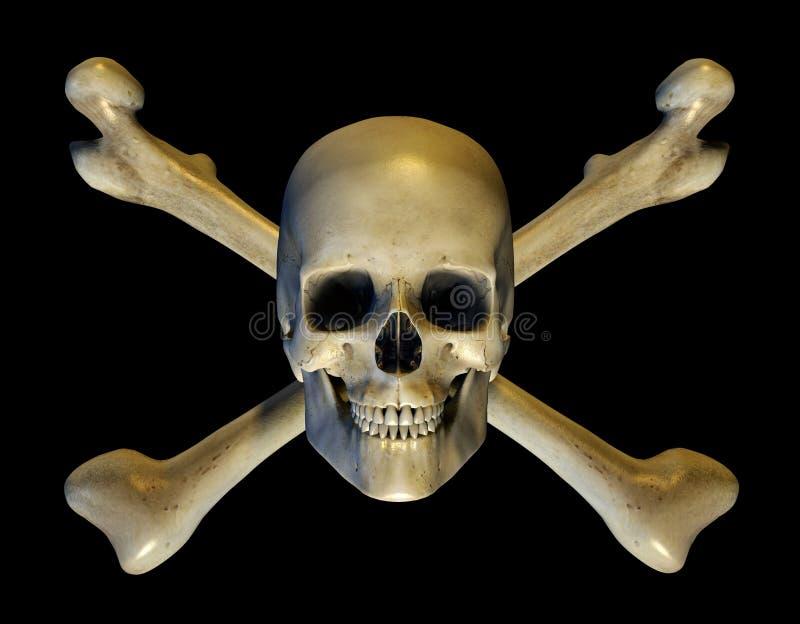 Cranio e Crossbones - include il percorso di residuo della potatura meccanica royalty illustrazione gratis