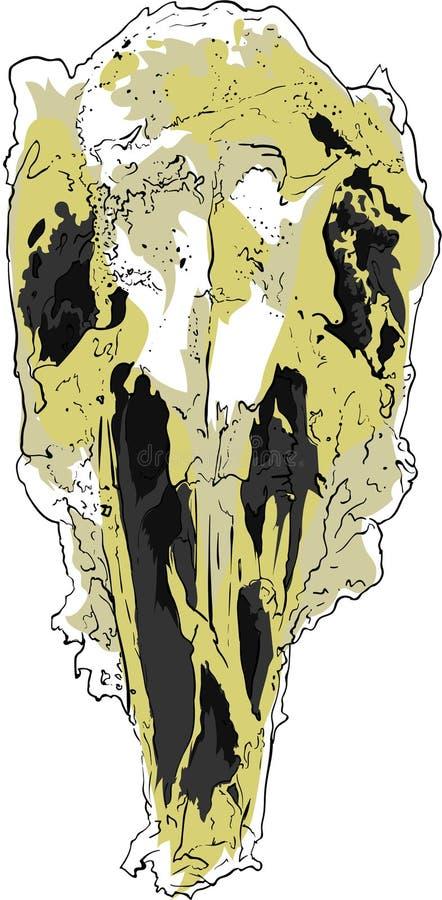 Cranio giallo dell'uccello immagini stock