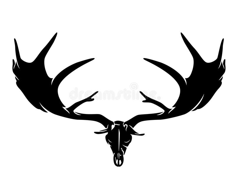 Cranio gigante preistorico dei cervi con i corni illustrazione vettoriale
