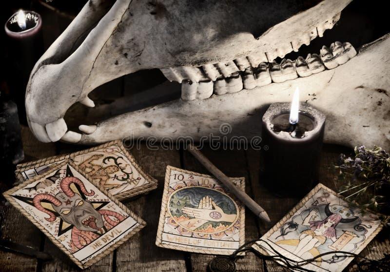 Cranio spaventoso con le carte di tarocchi, le erbe, la matita e le candele nere fotografia stock libera da diritti