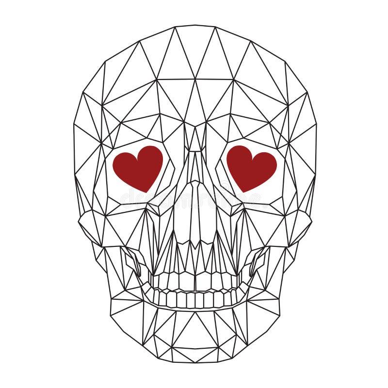 Cranio umano illustrazione vettoriale