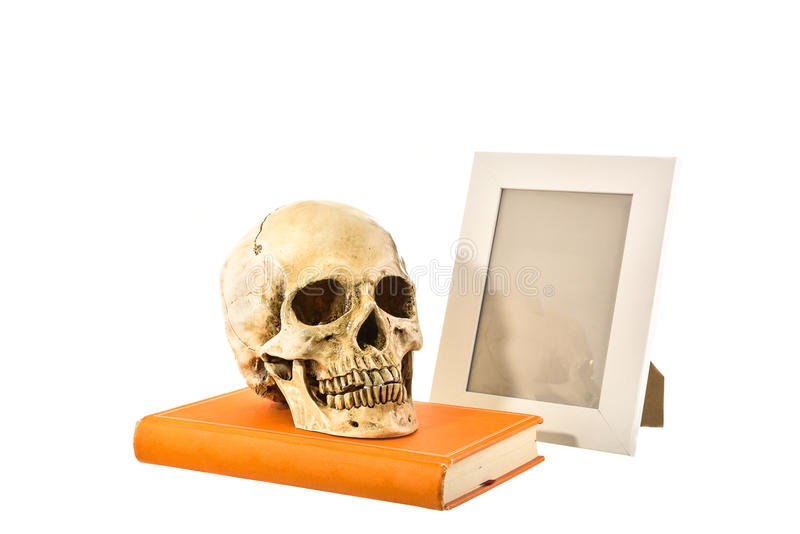 Download Cranio Umano Bianco Di Natura Morta Sul Libro Arancio Con La Cornice O Fotografia Stock - Immagine di fronte, faccia: 55361952