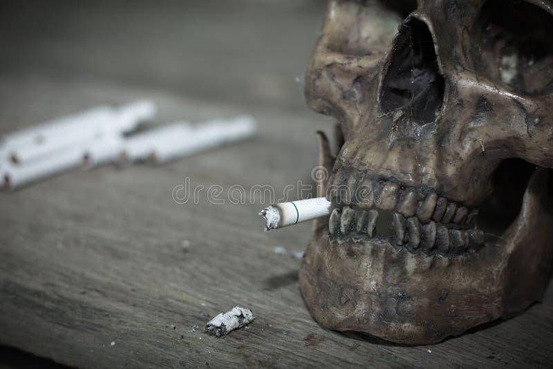 Cranio umano che fuma una sigaretta, morti a causa del fumo fotografie stock