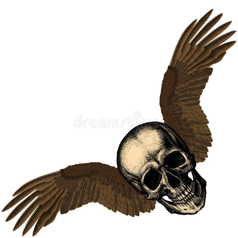 Cranio umano con le ali del ` s dell'aquila royalty illustrazione gratis