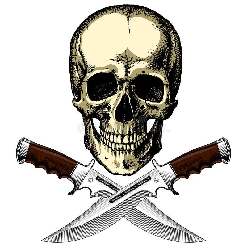 Cranio umano del pirata con due coltelli su un fondo in bianco royalty illustrazione gratis