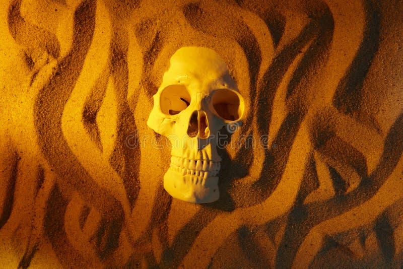 Cranio umano in deserto fotografia stock