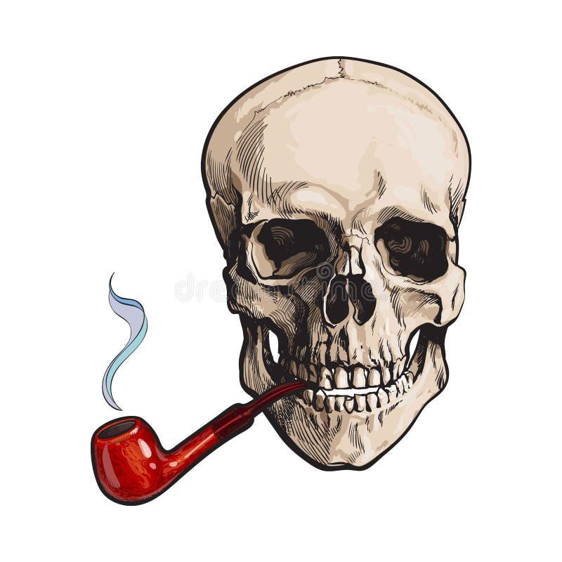 Cranio umano disegnato a mano che fuma tubo di legno laccato royalty illustrazione gratis