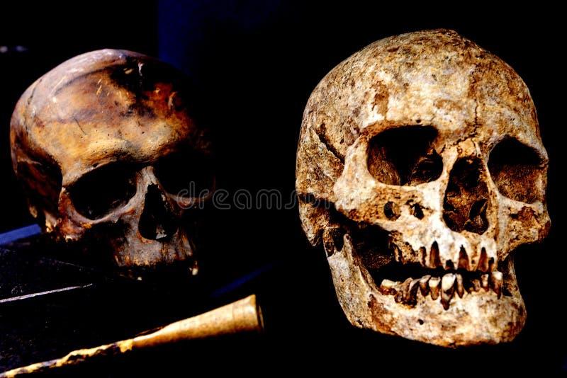 Cranio umano due e vecchi strumenti chirurgici fotografia stock libera da diritti