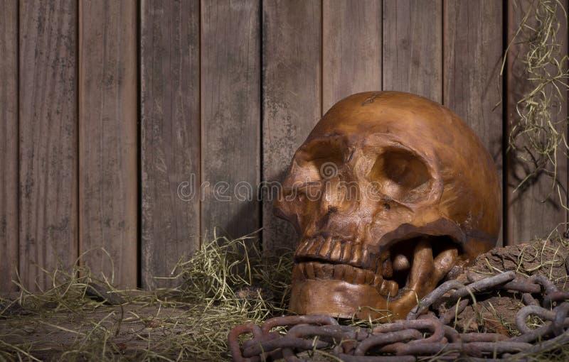 Cranio umano spaventoso fotografia stock