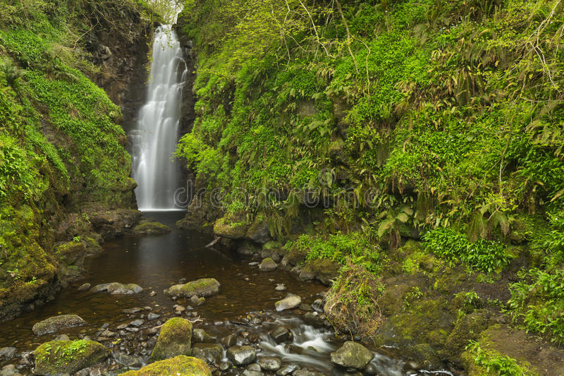 Crannynedgångarna i nordligt - Irland royaltyfria bilder